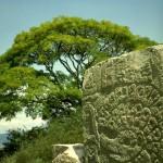 Danzante stone. Monte Alban