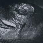 Kopf eines Adlers im Monolithtempel von Malinalco. Skulptierte Adler und Jaguare bildeten die Sitzbänk« für hohe Würdenträger im Inneren dieses aus dem Fels gehauenen Bauwerks. Im Jahre 1501 entstand Malinalco auf Anordnung des Herrschers Ahuizotl. Nachklassische Zeit. Aztekische Kultur. Um 1501.
