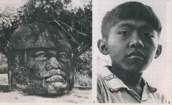1  Kolossalkopf aus La Venta. La Venta-Kultur. Etwa 500 v. d. Z. - 200 n. d. Z. Höhe: 260 cm. Parkmuseum Villa Hermosa, Tabasco.  2  Etwa zwölfjähriger Maya-Indianer aus Uxmal (Yucatan). Augen- und Mundpartien haben eine auffallende Ähnlichkeit mit den 2000 Jahre früher entstandenen Kolossal köpfen der La Venta-Kultur.